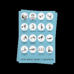 Systeme nerveux, équilibre et concentration
